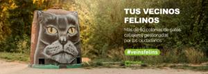 campaña veïns felins sabadell